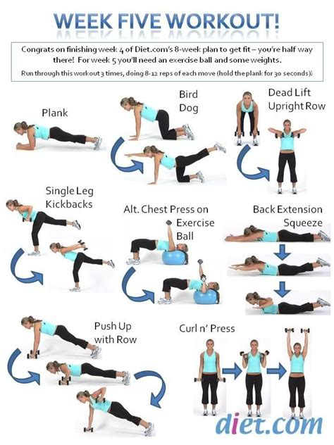 fitness challenge exercises 9 best 8 week fitness challenge images on