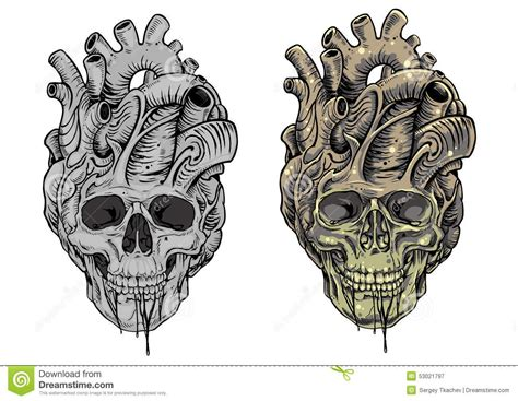skull heart tattoo skull and designs skull stock illustration