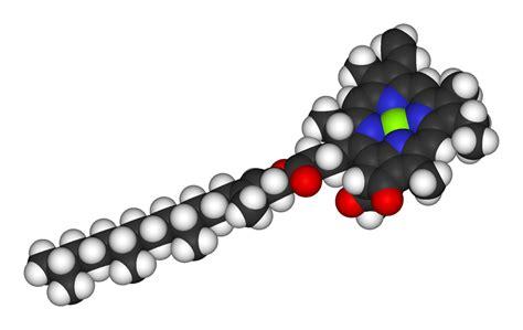 filechlorophyll   vdwpng territorioscuola enhanced