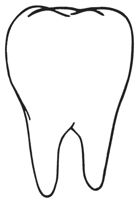 template of a tooth teeth clipart best
