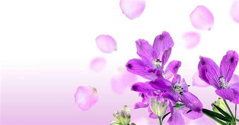 desain kartu nama bunga gambar desain bunga joy studio design gallery best design