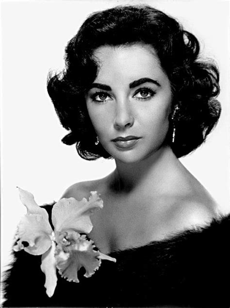 actress cat on a hot tin roof elizabeth taylor elizabeth rosemond taylor actress