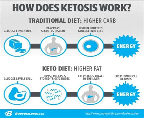 kickass keto your 28 day start guide to health burning and weight loss books 17 best images about ketosis on ketogenic diet
