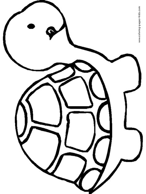 printable coloring pages easy simple turtle color page