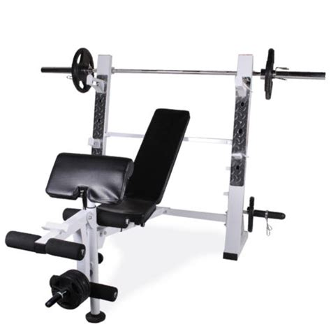olympic weight bench with squat rack olympic weight lifting bench leg extension preacher curl