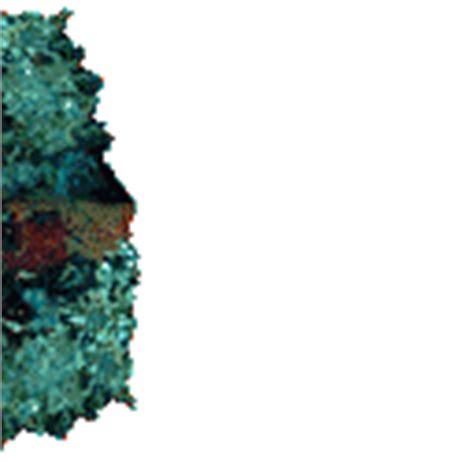 imagenes gif animales im 225 genes animadas de peces gifs de animales gt peces