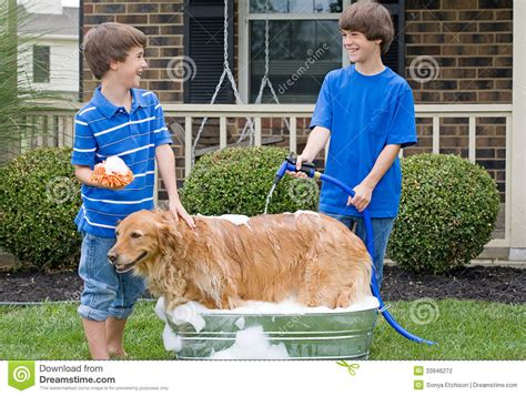 giving a bath boys giving a bath stock photography image 33946272