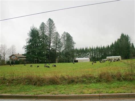 5 acres in mcminnville oregon with home for sale