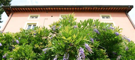appartamento giardino appartamento giardino villa mori