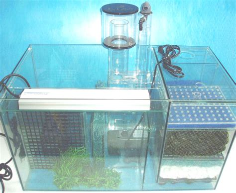 Plumbing Aquarium Sump by Filters And Pumps Page Ecological Filtration System