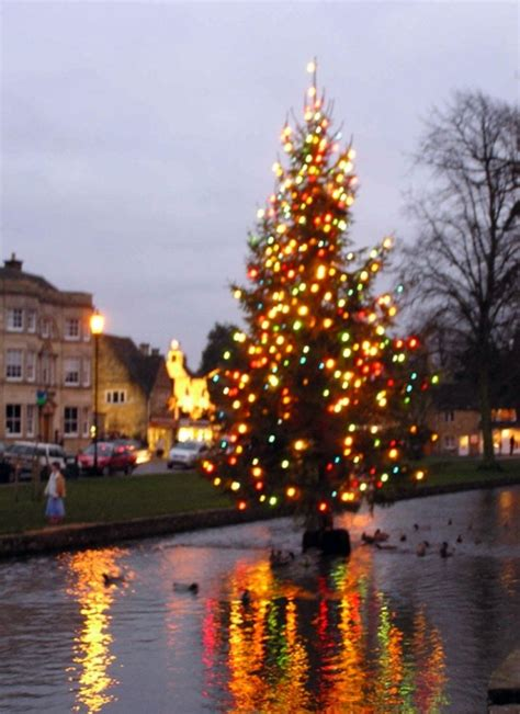 xmas tree hsitory in britain quot river tree in bourton on the water gloucestershire quot by dave latham at