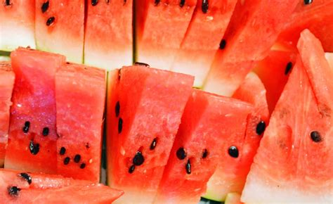 history of watermelon all about the watermelon history and usage