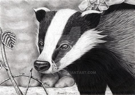 badger cull petition stop the badger cull by reenah78 on deviantart