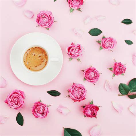 fiori e frutta fiori e frutta free recipe source antonio zucco fiori e