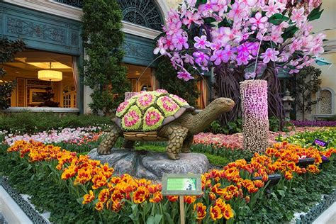 Botanical Gardens Bellagio by Japanese Culture Honored In Bellagio Conservatory