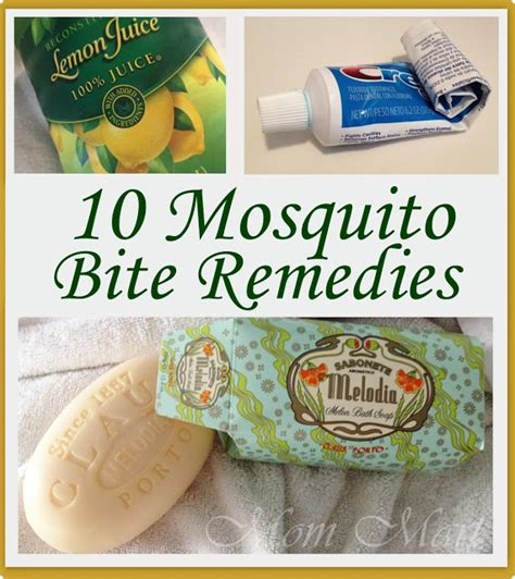 mart 10 mosquito bite itch relief tips tricks