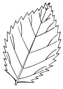 leaf coloring book az coloring pages