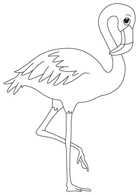 a wading bird coloring page download free a wading bird