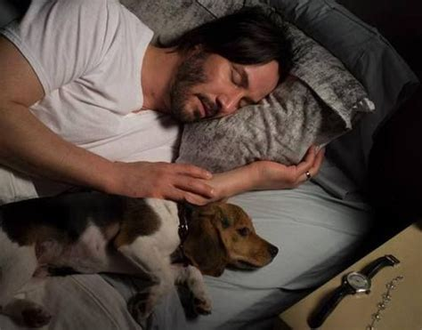 wick puppy 25 best ideas about wick on wick keanu reeves and