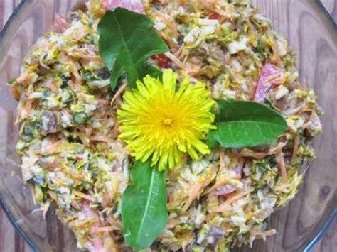 ricette con fiori di tarassaco insalata di fiori di tarassaco ricette salutari vivo