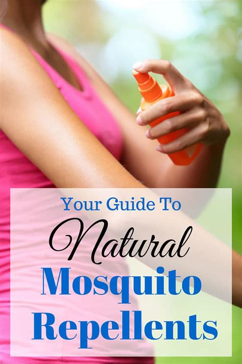 how to repel bed bugs natural ways to repel mosquitoes without bug spray house of hawthornes