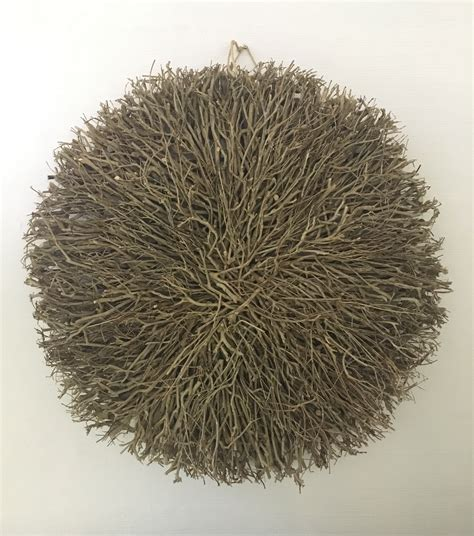 twig wall decor wall decor large round twig natural daydream leisure