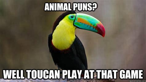 Animal Pun Memes - sassy toucan memes quickmeme