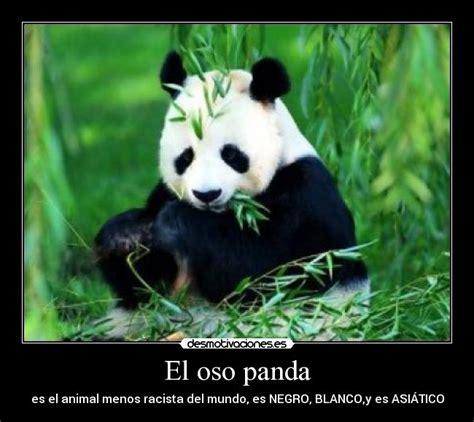 Memes De Pandas - el oso panda desmotivaciones
