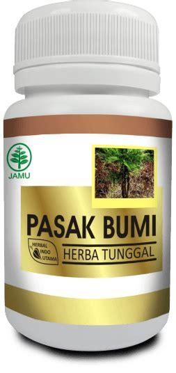 Herbal Pasak Bumi Herba Pasak Bumi Penambah Stamina Pria Pondok Ibu