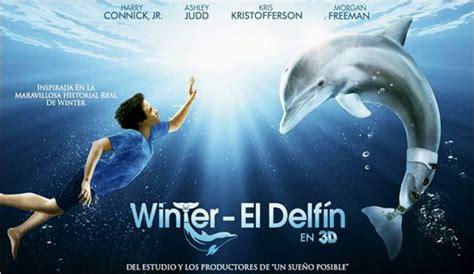 imagenes reales de winter el delfin trailer 2 subtitulado de winter el delf 237 n 2 mi colombia