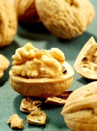 alimentazione cardiopatici alimentazione nessuna protezione cardiaca con le noci