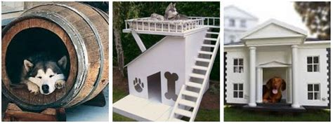 dog house meaning in the dog house fl 252 ff design and decor