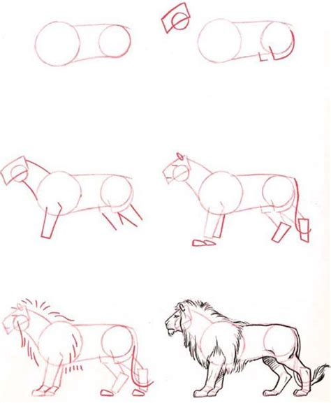 tutorial for sketchbook 25 best ideas about draw animals on pinterest tutorial