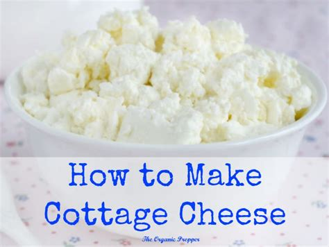 how to make cottage cheese the organic prepper