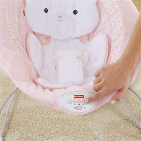 fisher price snugabunny swing weight limit my little snugakitty deluxe bouncer