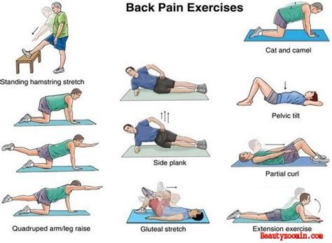 best exercises to relieve back at home beautyzoomin