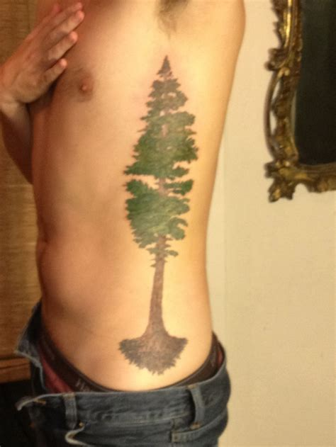 redwood tree tattoo the world s catalog of ideas