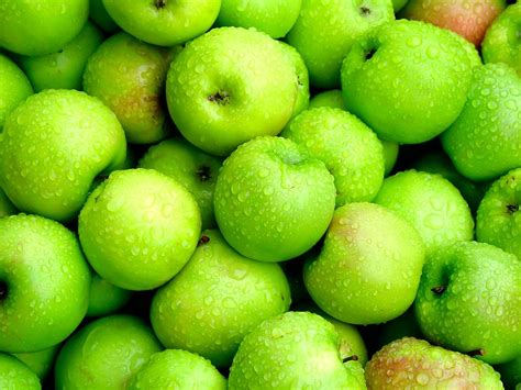 apple green latest all fun things beautiful green apples health