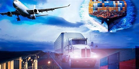 role   independent freight forwarder  global