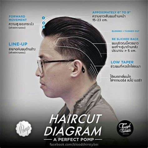mens haircuts diagrams 17 best images about haircuts step by step on pinterest