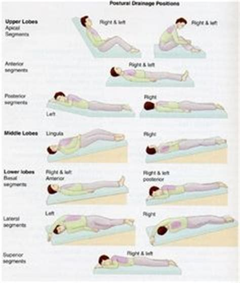bed positioning 1000 images about patient positions on pinterest