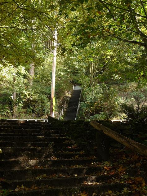 golden gardens blog links seattle stairway walks