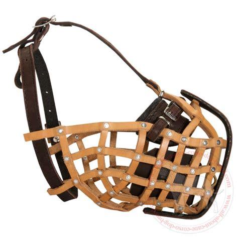 leather muzzle buy adjustable leather basket muzzle for corso agitation