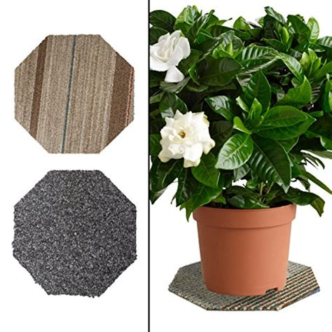 floor protectors for plants 2 plant coasters 11 quot house planter flower pot waterproof