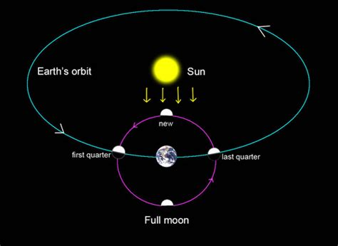 diagram of sun moon and earth diagram of earth s orbit around the sun pics about space