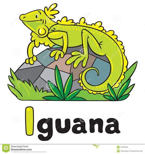 imagenes infantiles que empiecen con i peque 241 a iguana para abc alfabeto i ilustraci 243 n del vector