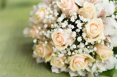 fiori anniversario di matrimonio anniversario 20 anni di matrimonio nozze di porcellana