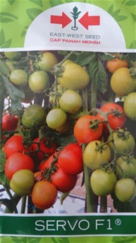 Benih Semangka Kuning Unggul lmga agro jual produk pertanian harga murah dan grosir benih tomat