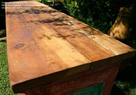 spar urethane bar top crafts hobbies bar top spar varnish or pour on epoxy pros and cons 1 by