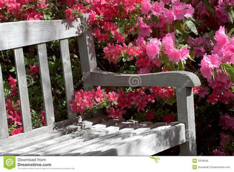 flower bench garden bench and flowers stock photo image of azalea